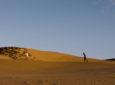 Semaine de la Critique 2019 : «Abou leila» d'Amin Sidi-Boumédiène, errances et violences dans le désert