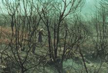 Cannes 2019, Un certain regard : «Viendra le feu», portrait sobre et mystérieux d'un pyromane