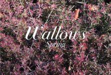 Wallows, l'Indie Rock Boys Band à la Maroquinerie