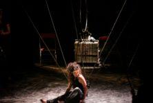 Des «5es Hurlants» très civilisés, ou quand le cirque montre qu'il sait se mettre en scène
