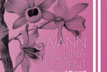 Avignon OFF 2019: «Swann s'inclina poliment» et nous emmena dans son monde