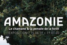 Chamanisme : « Amazonie, le chamane et la pensée de la forêt »