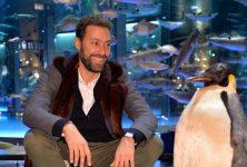 Les Causeries de David Wahl investissent les Océans du Museum d'Histoire Naturelle