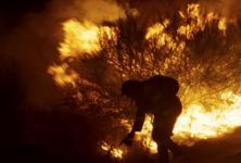 Les sorties dvd de l'hiver 2020 : focus films français avant les César