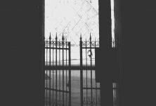 Emmanuelle Polack & le musée du Louvre à la recherche des oeuvres d'art spoliées