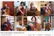 Ces musiciens qui se filment dans leur confinement (12)