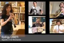 Ces musiciens qui se filment dans leur confinement (19)