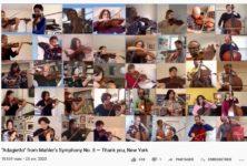Ces musiciens qui se filment dans leur confinement (47)