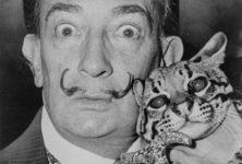 «Dalí : regarder, c'est inventer», au musée Dalí Paris