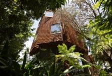 «Quand la forme parle», l'architecture contemporaine japonaise raconte ses habitants
