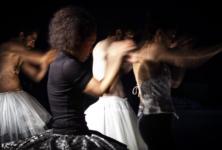 HYBRIDITY : les glissements hachurés de Rafaële Giovanola