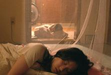 Le Palmarès du Festival des 3 Continents est tombé avec deux films ex-aequo