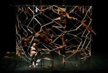 Biac 2021 : « Parallèle 26 » : Crise existentielle en cage
