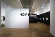 Noir et blanc : une esthétique de la photographie, l'exposition du Grand Palais à découvrir virtuellement