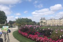 700 000 euros pour une reprise de la vie culturelle parisienne en plein air