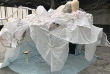 Exposition « Faire l'autruche » : Un univers luxuriant où nature et culture se rejoignent