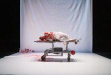Avignon OFF : Morphine, la tragique solitude du médecin