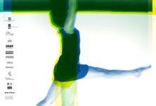 16e Biennale de danse : cap au nord